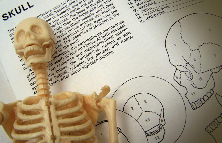 Kiedy kości i stawy dokuczają…